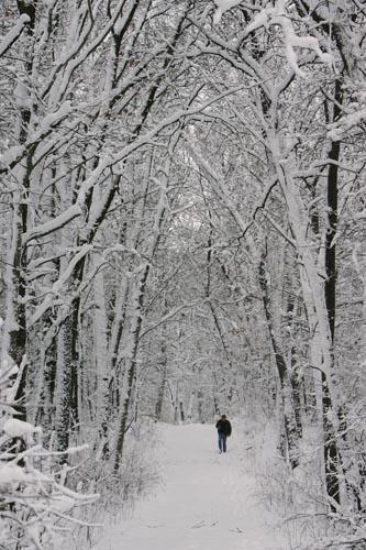 2008-0101-bb-SnowStorm505T.jpg