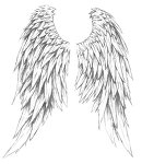 Wings_by_bigmanhaywood
